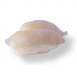 Sushi Dorade